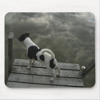 Dog on Top of Roof Mouse Pad