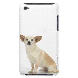 Dog on White 13 Barely There iPod Case
