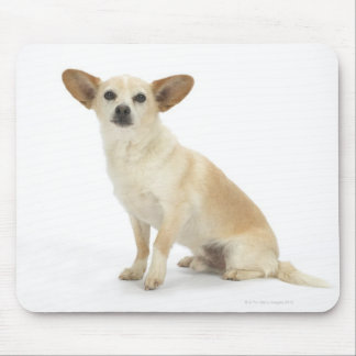 Dog on White 13 Mouse Pad