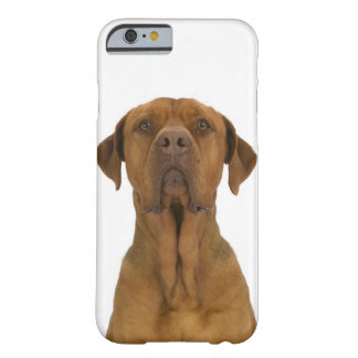 Dog on White 38 Barely There iPhone 6 Case