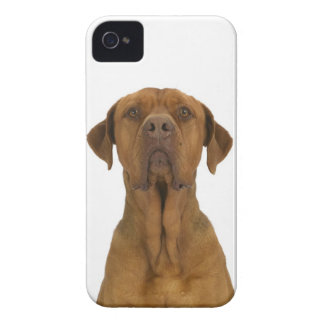 Dog on White 38 iPhone 4 Cover