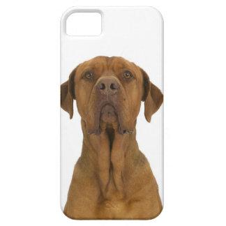 Dog on White 38 iPhone 5 Case