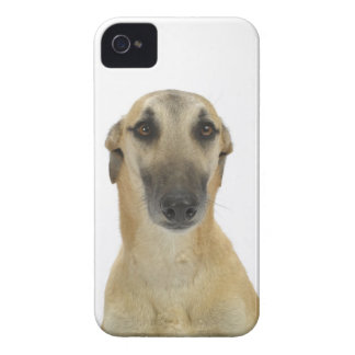 Dog on White 41 Case-Mate iPhone 4 Case