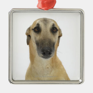 Dog on White 41 Christmas Ornament