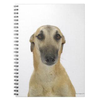 Dog on White 41 Spiral Notebook