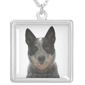 Dog on White 5 Necklaces