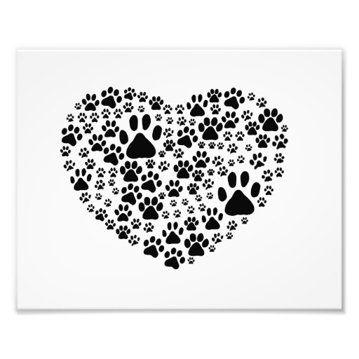 Dog Paws, Trails, Paw-prints, Heart - Black Photographic Print