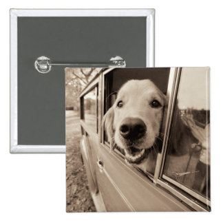 Dog Peeking Out a Car Window 15 Cm Square Badge