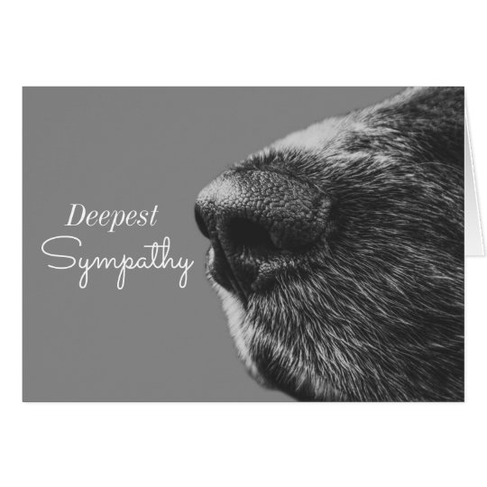 Dog Pet Sympathy | Dog Condolence Card