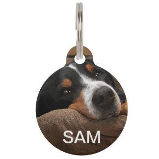 Dog Pet Tag Pet Nametag