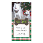 Dog Photo Christmas Greeting Photo Card