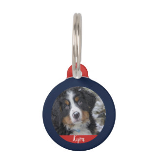 Dog photo name contact information red pet name tag