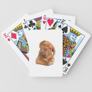 Dog Bicycle Poker Deck