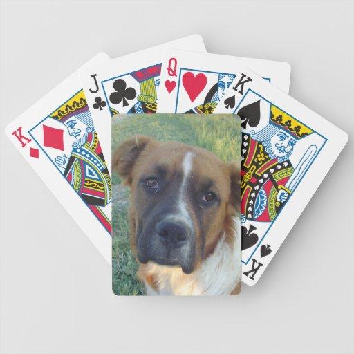 Dog Card Deck