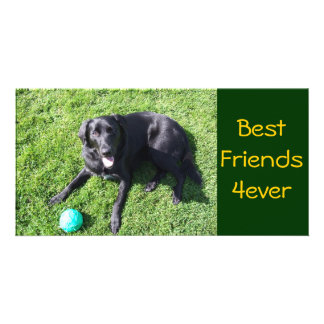 Dog playing with ball - happy Best Friends Personalized Photo Card