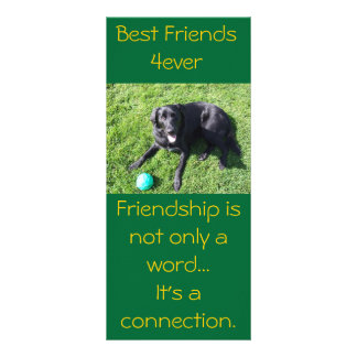Dog playing with ball - happy Best Friends Rack Cards
