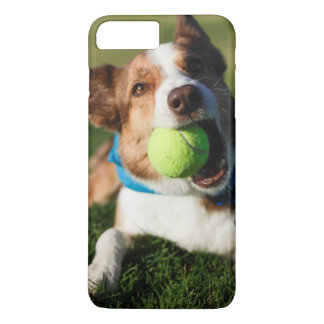 Dog Playing with its ball iPhone 8 Plus/7 Plus Case