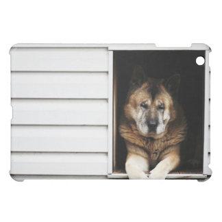 dog portrait iPad mini cases