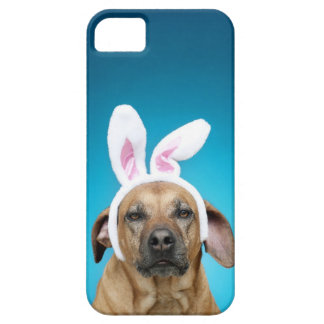 Dog portrait wearing Easter bunny ears iPhone 5 Cases