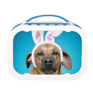 Dog portrait wearing Easter bunny ears Lunch Box