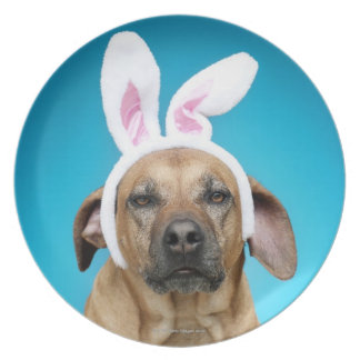 Dog portrait wearing Easter bunny ears Plate