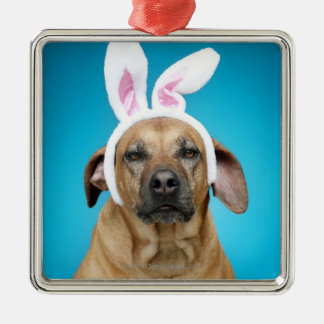 Dog portrait wearing Easter bunny ears Silver-Colored Square Decoration