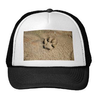 Dog print cap