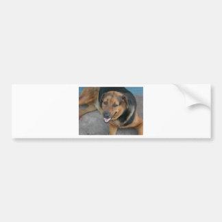 Dog relaxing bumper sticker