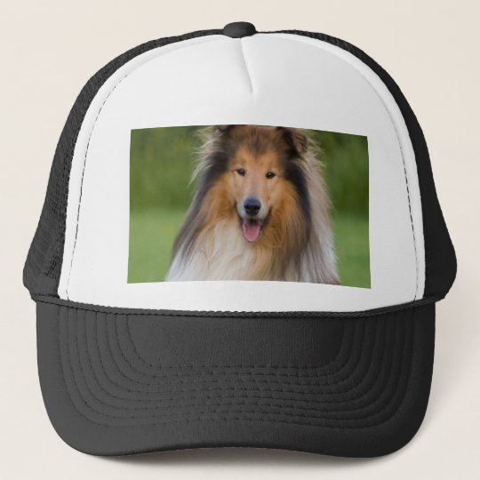 dog rough collie wait for love trucker hat