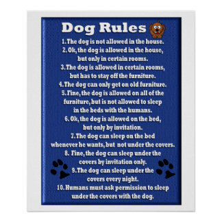 Dog Rules - Poster