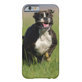 Dog Running Barely There iPhone 6 Case