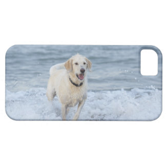 Dog running in water at beach. barely there iPhone 5 case