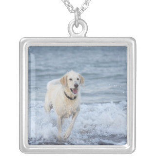 Dog running in water at beach. silver plated necklace