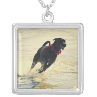 Dog running in water silver plated necklace