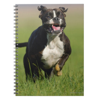 Dog Running Notebooks