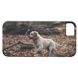 Dog running on dry leaves barely there iPhone 5 case