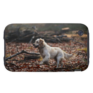Dog running on dry leaves iPhone 3 tough case