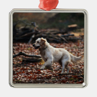 Dog running on dry leaves christmas ornament