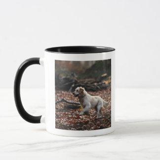 Dog running on dry leaves mug