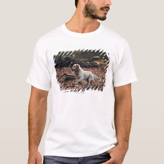 Dog running on dry leaves T-Shirt