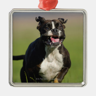 Dog Running Silver-Colored Square Decoration
