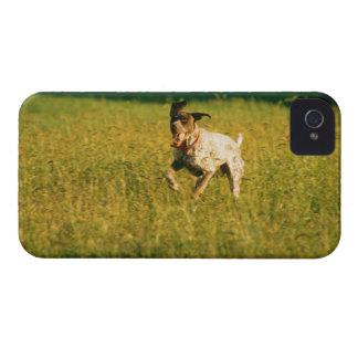 Dog running through grass Case-Mate iPhone 4 cases