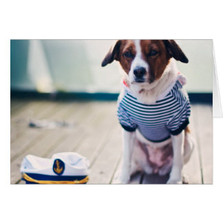 Dog Sailor Sitting Cap Clothes White Nautical Card