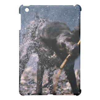 Dog Shaking Water from His Coat iPad Mini Cover
