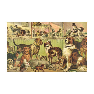 Dog Show 1893 Gallery Wrapped Canvas