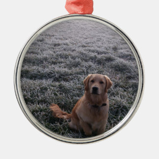 dog Silver-Colored round decoration