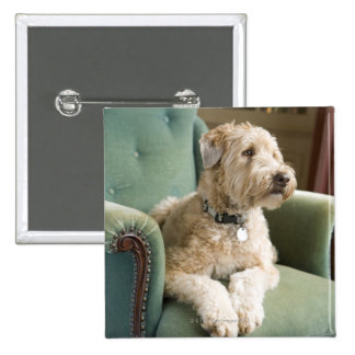 Dog sitting in armchair 15 cm square badge