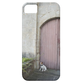 Dog sitting in front of closed doors barely there iPhone 5 case