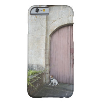Dog sitting in front of closed doors barely there iPhone 6 case