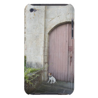 Dog sitting in front of closed doors barely there iPod cases